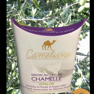 10-savon-au-lait-de-chamelle-VITALITE-camel-idee-camel-milk-2