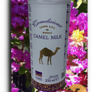 6-Une-canette-de-lait-de-chamelle-liquide-camel-idee-camel-milk-2