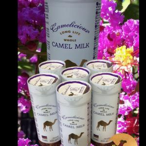 7-six-canettes-de-lait-de-chamelle-liquide-camel-idee-camel-milk-2
