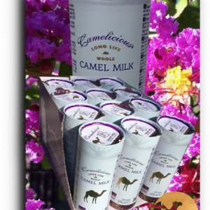 8-douze-Une-canette-de-lait-de-chamelle-liquide-camel-idee-camel-milk-2
