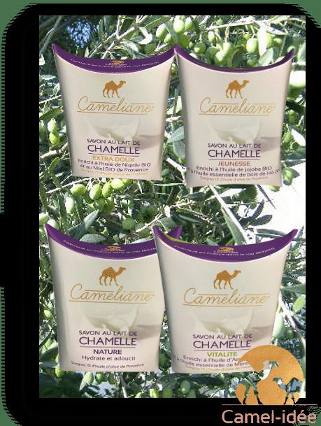 Lot-de-4-savons-au-lait-de-chamelle-camel-idee-camel-milk-3